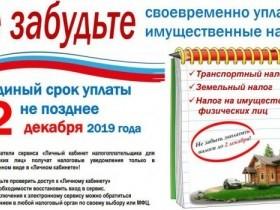 Единый срок уплаты не позднее 2 декабря 2019 г.
